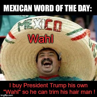 1ikwsc mexico buys president trump his own wall ! imgflip