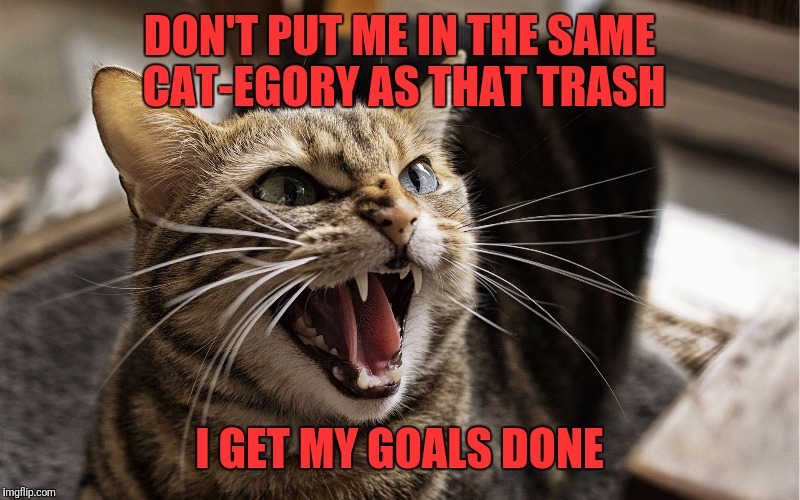 DON'T PUT ME IN THE SAME CAT-EGORY AS THAT TRASH I GET MY GOALS DONE | made w/ Imgflip meme maker