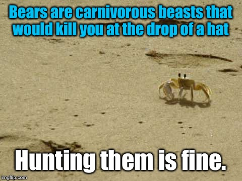 Little Acknowledged Fact Crab | Bears are carnivorous beasts that would kill you at the drop of a hat Hunting them is fine. | image tagged in little acknowledged fact crab | made w/ Imgflip meme maker