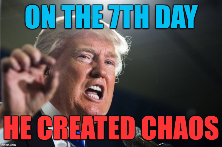 Donald Trump's America | ON THE 7TH DAY HE CREATED CHAOS | image tagged in donald trump,memes | made w/ Imgflip meme maker