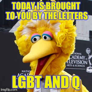 Big Bird |  TODAY IS BROUGHT TO YOU BY THE LETTERS; LGBT AND Q | image tagged in memes,big bird | made w/ Imgflip meme maker