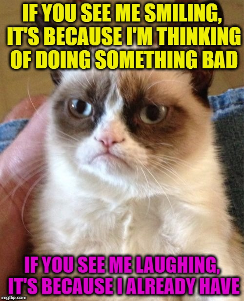 Grumpy Cat Meme | IF YOU SEE ME SMILING, IT'S BECAUSE I'M THINKING OF DOING SOMETHING BAD IF YOU SEE ME LAUGHING, IT'S BECAUSE I ALREADY HAVE | image tagged in memes,grumpy cat | made w/ Imgflip meme maker