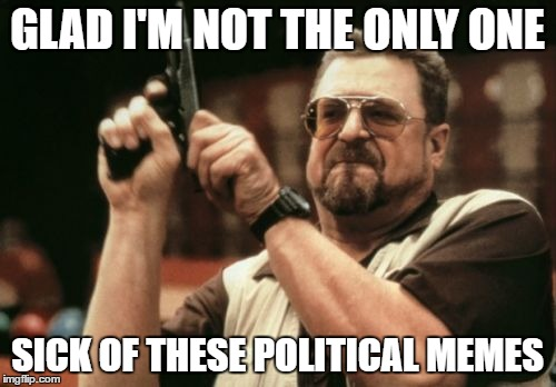 Am I The Only One Around Here Meme | GLAD I'M NOT THE ONLY ONE SICK OF THESE POLITICAL MEMES | image tagged in memes,am i the only one around here | made w/ Imgflip meme maker