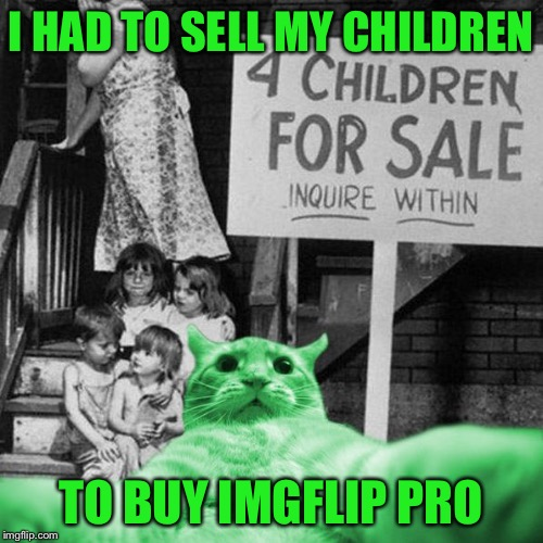 RayCat Great Depression | I HAD TO SELL MY CHILDREN TO BUY IMGFLIP PRO | image tagged in raycat great depression | made w/ Imgflip meme maker