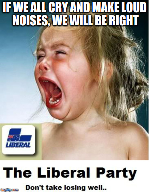 Crying Liberals  | IF WE ALL CRY AND MAKE LOUD NOISES, WE WILL BE RIGHT | image tagged in crying liberals | made w/ Imgflip meme maker