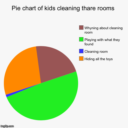 Pie Chart Of Kids Cleaning Thare Rooms Imgflip
