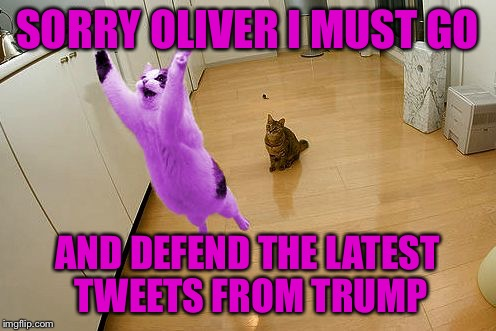RayCat save the world | SORRY OLIVER I MUST GO AND DEFEND THE LATEST TWEETS FROM TRUMP | image tagged in raycat save the world | made w/ Imgflip meme maker