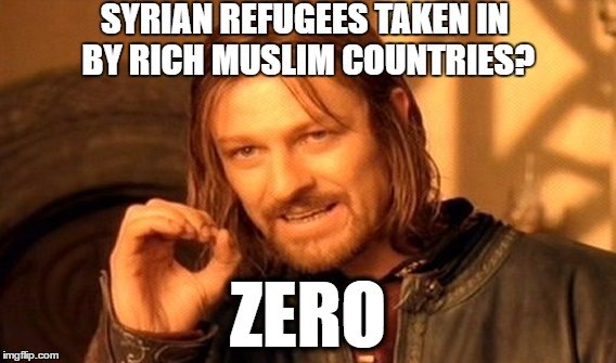 ZERO REFUGEES | SYRIAN REFUGEES TAKEN IN BY RICH MUSLIM COUNTRIES? ZERO | image tagged in memes,one does not simply,syria,syrian refugees | made w/ Imgflip meme maker