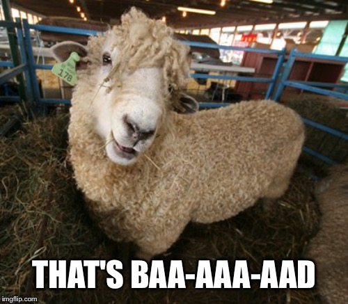 THAT'S BAA-AAA-AAD | made w/ Imgflip meme maker