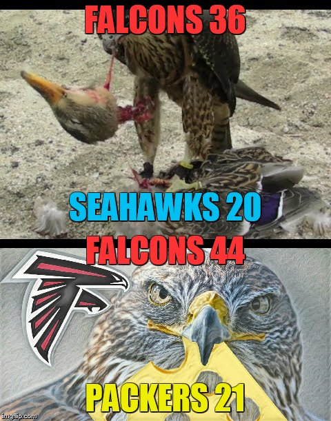 FALCONS 36 PACKERS 21 FALCONS 44 SEAHAWKS 20 | made w/ Imgflip meme maker