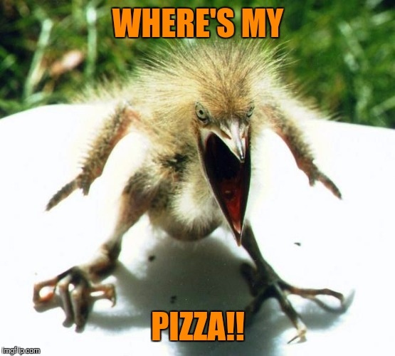 Angry bird | WHERE'S MY PIZZA!! | image tagged in angry bird | made w/ Imgflip meme maker