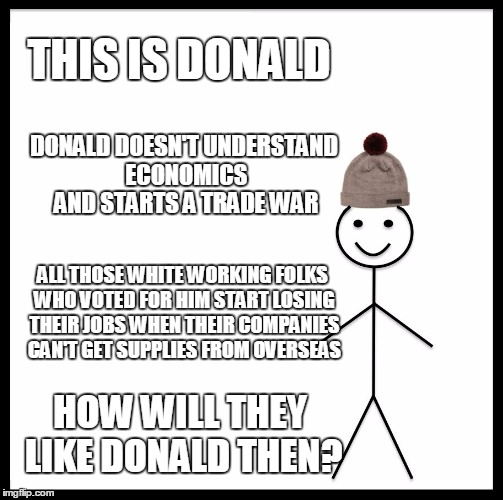 THIS IS DONALD HOW WILL THEY LIKE DONALD THEN? DONALD DOESN'T UNDERSTAND ECONOMICS AND STARTS A TRADE WAR ALL THOSE WHITE WORKING FOLKS WHO  | made w/ Imgflip meme maker