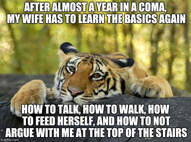 Confession Tiger | AFTER ALMOST A YEAR IN A COMA, MY WIFE HAS TO LEARN THE BASICS AGAIN HOW TO TALK, HOW TO WALK, HOW TO FEED HERSELF, AND HOW TO NOT ARGUE WIT | image tagged in confession tiger,memes | made w/ Imgflip meme maker