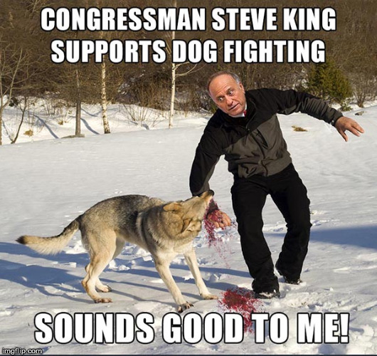 Congressman Steve King Supports Dog Fighting | image tagged in memes,steve king,dog fighting | made w/ Imgflip meme maker
