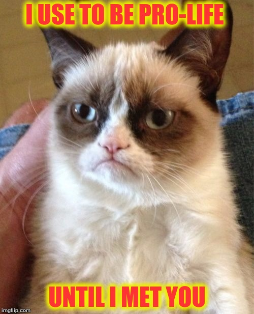 Grumpy Cat Meme | I USE TO BE PRO-LIFE UNTIL I MET YOU | image tagged in memes,grumpy cat | made w/ Imgflip meme maker