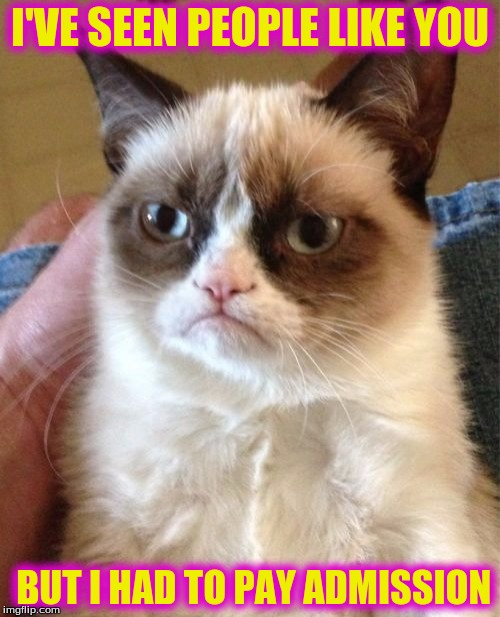 Grumpy Cat Meme | I'VE SEEN PEOPLE LIKE YOU BUT I HAD TO PAY ADMISSION | image tagged in memes,grumpy cat | made w/ Imgflip meme maker