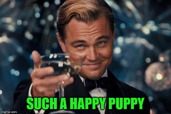 Leonardo Dicaprio Cheers Meme | SUCH A HAPPY PUPPY | image tagged in memes,leonardo dicaprio cheers | made w/ Imgflip meme maker