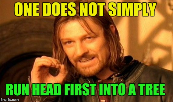 One Does Not Simply Meme | ONE DOES NOT SIMPLY RUN HEAD FIRST INTO A TREE | image tagged in memes,one does not simply | made w/ Imgflip meme maker