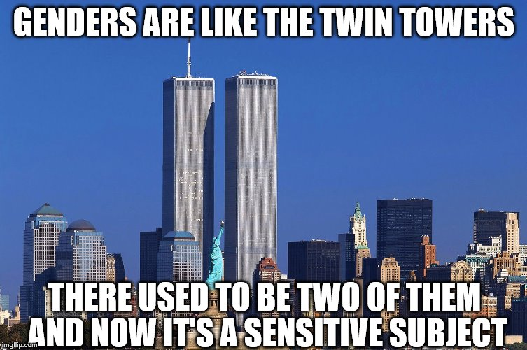 How Many Towers Do We Have Now Anyway? | GENDERS ARE LIKE THE TWIN TOWERS THERE USED TO BE TWO OF THEM AND NOW IT'S A SENSITIVE SUBJECT | image tagged in memes,twin towers,binary,non binary,gender | made w/ Imgflip meme maker