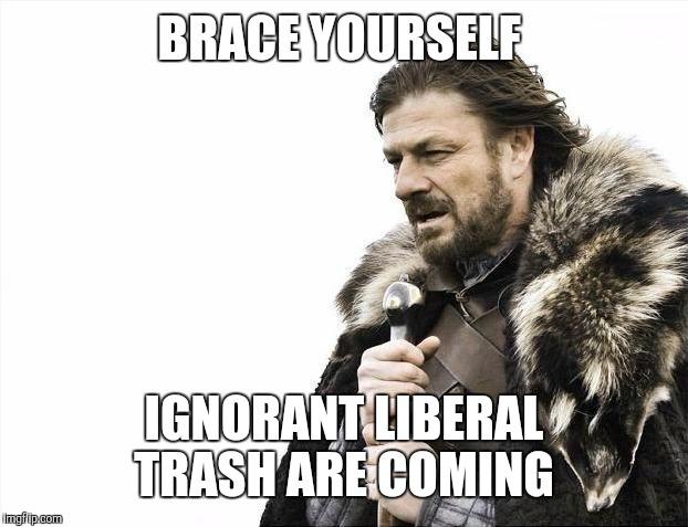 Brace Yourselves X is Coming Meme | BRACE YOURSELF IGNORANT LIBERAL TRASH ARE COMING | image tagged in memes,brace yourselves x is coming | made w/ Imgflip meme maker