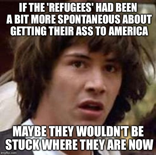 Conspiracy Keanu Meme | IF THE 'REFUGEES' HAD BEEN A BIT MORE SPONTANEOUS ABOUT GETTING THEIR ASS TO AMERICA MAYBE THEY WOULDN'T BE STUCK WHERE THEY ARE NOW | image tagged in memes,conspiracy keanu | made w/ Imgflip meme maker