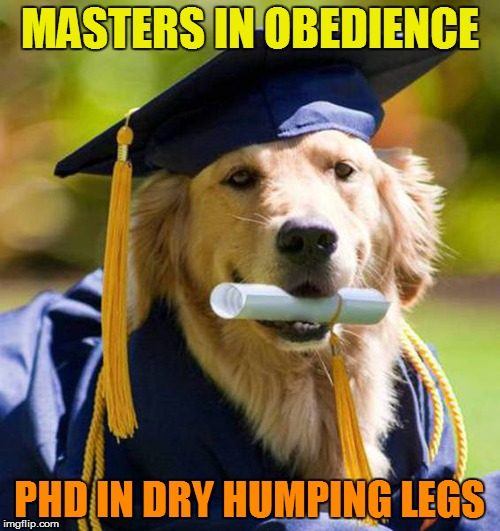MASTERS IN OBEDIENCE PHD IN DRY HUMPING LEGS | made w/ Imgflip meme maker