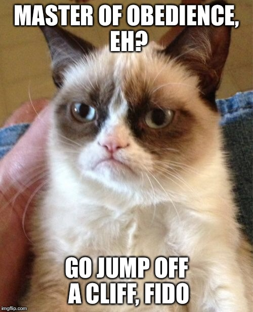 Grumpy Cat Meme | MASTER OF OBEDIENCE, EH? GO JUMP OFF A CLIFF, FIDO | image tagged in memes,grumpy cat | made w/ Imgflip meme maker