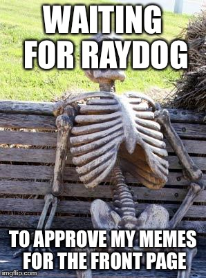 Waiting Skeleton Meme | WAITING FOR RAYDOG TO APPROVE MY MEMES FOR THE FRONT PAGE | image tagged in memes,waiting skeleton | made w/ Imgflip meme maker