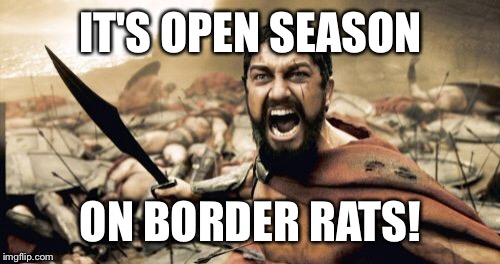Sparta Leonidas Meme | IT'S OPEN SEASON ON BORDER RATS! | image tagged in memes,sparta leonidas | made w/ Imgflip meme maker