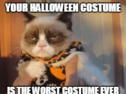Grumpy Cat Halloween | YOUR HALLOWEEN COSTUME IS THE WORST COSTUME EVER | image tagged in memes,grumpy cat halloween,grumpy cat | made w/ Imgflip meme maker