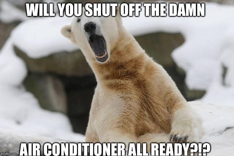 Image Tagged In Popular Opinion Polar Bear Imgflip