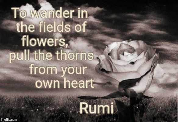 To wander in the fields of flowers, pull the thorns from your own heart - Rumi | To wander in the fields of flowers,     pull the thorns     from your         own heart Rumi | image tagged in rumi,poet,poetry,persia,flowers,thorns | made w/ Imgflip meme maker