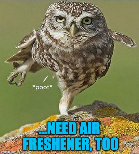 ...NEED AIR FRESHENER, TOO | made w/ Imgflip meme maker