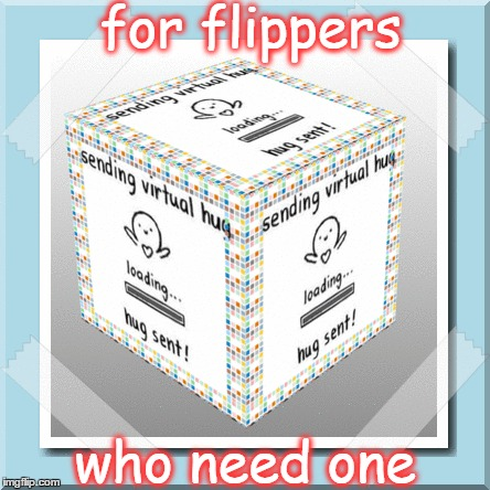 (((((IMGFLIP))))) | for flippers who need one | image tagged in meme,imgflip,imgflippers,flippers,community,funny | made w/ Imgflip meme maker