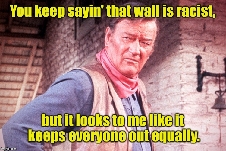 . | image tagged in memes,border wall,john wayne,racist,misdefinition,delusional | made w/ Imgflip meme maker