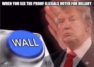 Trump wall button  |  WHEN YOU SEE THE PROOF ILLEGALS VOTED FOR HILLARY | image tagged in trump wall button | made w/ Imgflip meme maker
