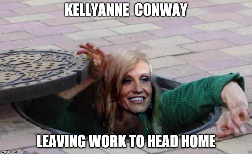 Kellyanne leaving work | KELLYANNE  CONWAY LEAVING WORK TO HEAD HOME | image tagged in sewer rat,kellyanne | made w/ Imgflip meme maker