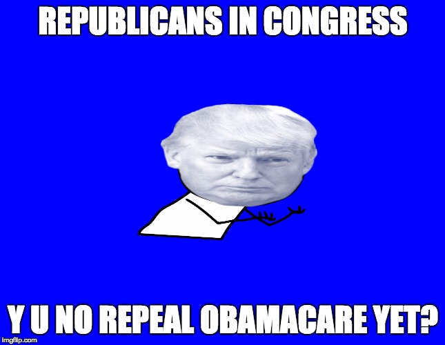 REPUBLICANS IN CONGRESS Y U NO REPEAL OBAMACARE YET? | image tagged in trump y u no | made w/ Imgflip meme maker