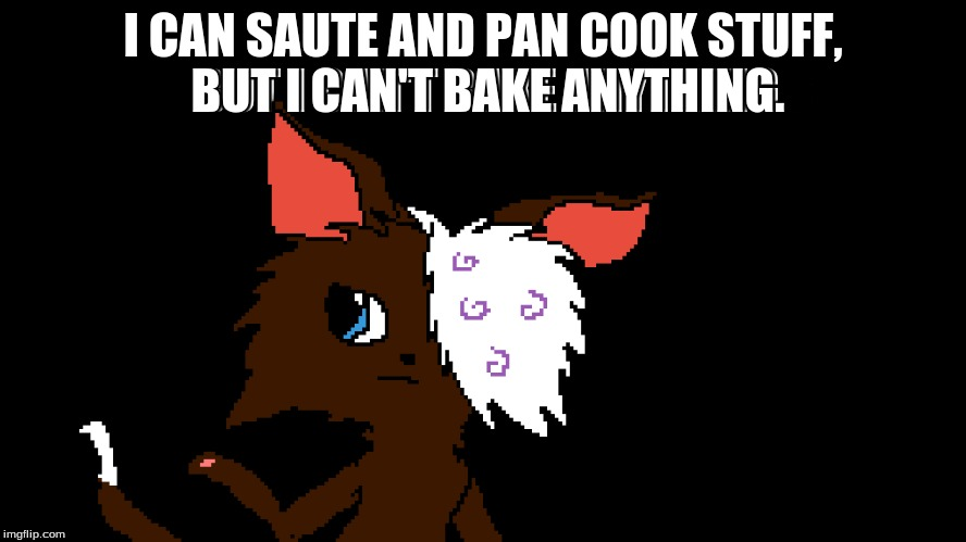 I CAN SAUTE AND PAN COOK STUFF, BUT I CAN'T BAKE ANYTHING. | made w/ Imgflip meme maker