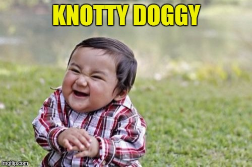 Evil Toddler Meme | KNOTTY DOGGY | image tagged in memes,evil toddler | made w/ Imgflip meme maker