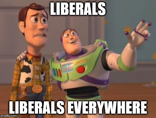 X, X Everywhere Meme | LIBERALS LIBERALS EVERYWHERE | image tagged in memes,x x everywhere | made w/ Imgflip meme maker