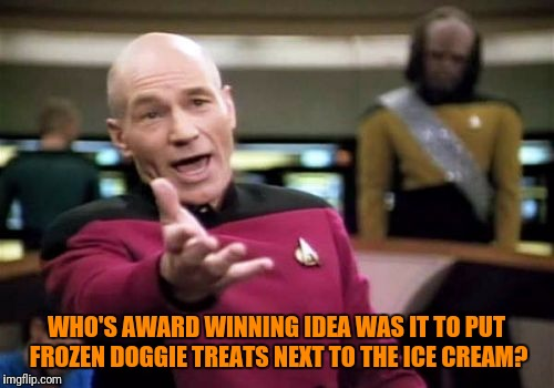 The Manufacturers Even Make the Boxes Look Like Real Ice Cream | WHO'S AWARD WINNING IDEA WAS IT TO PUT FROZEN DOGGIE TREATS NEXT TO THE ICE CREAM? | image tagged in memes,picard wtf,doggie,treats,ice cream,dumb and dumber idea | made w/ Imgflip meme maker