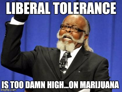 Too Damn High Meme | LIBERAL TOLERANCE IS TOO DAMN HIGH...ON MARIJUANA | image tagged in memes,too damn high | made w/ Imgflip meme maker