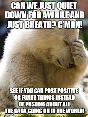 Facepalm Bear |  CAN WE JUST QUIET DOWN FOR AWHILE AND JUST BREATH? C'MON! SEE IF YOU CAN POST POSITIVE OR FUNNY THINGS INSTEAD OF POSTING ABOUT ALL THE CACA GOING ON IN THE WORLD! | image tagged in memes,facepalm bear | made w/ Imgflip meme maker