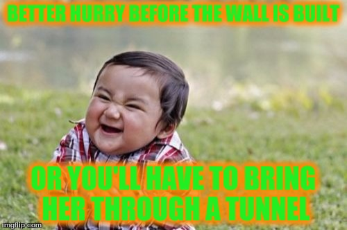 Evil Toddler Meme | BETTER HURRY BEFORE THE WALL IS BUILT OR YOU'LL HAVE TO BRING HER THROUGH A TUNNEL | image tagged in memes,evil toddler | made w/ Imgflip meme maker
