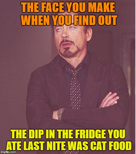 Face You Make Robert Downey Jr Meme | THE FACE YOU MAKE WHEN YOU FIND OUT THE DIP IN THE FRIDGE YOU ATE LAST NITE WAS CAT FOOD | image tagged in memes,face you make robert downey jr | made w/ Imgflip meme maker