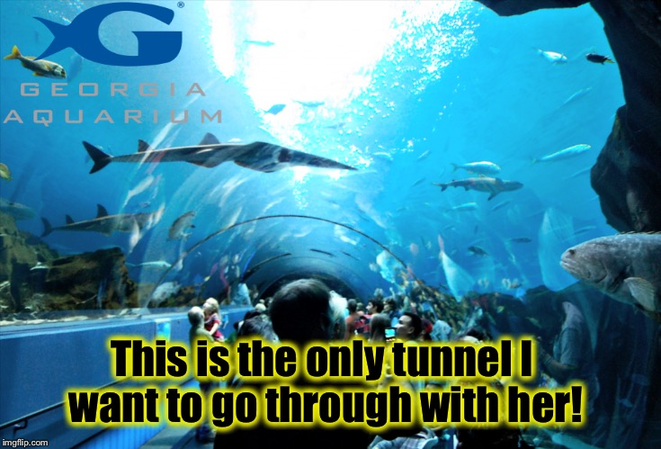This is the only tunnel I want to go through with her! | made w/ Imgflip meme maker