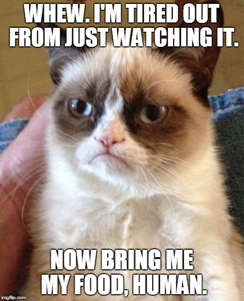 Grumpy Cat Meme | WHEW. I'M TIRED OUT FROM JUST WATCHING IT. NOW BRING ME MY FOOD, HUMAN. | image tagged in memes,grumpy cat | made w/ Imgflip meme maker