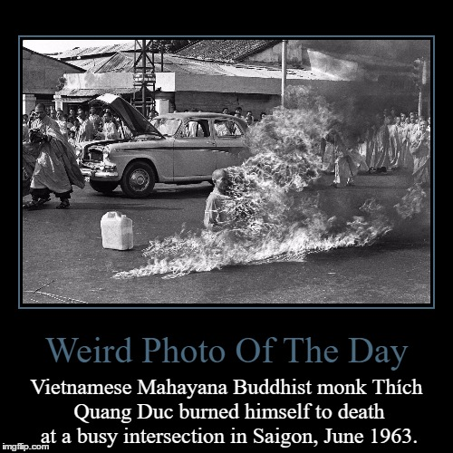 No News Picture In History Has Generated So Much Emotion Around The World As That One | Weird Photo Of The Day | Vietnamese Mahayana Buddhist monk Thích Quang Duc burned himself to death at a busy intersection in Saigon, June 19 | image tagged in funny,demotivationals,weird,photo of the day,buddhist monk,vietnam | made w/ Imgflip demotivational maker