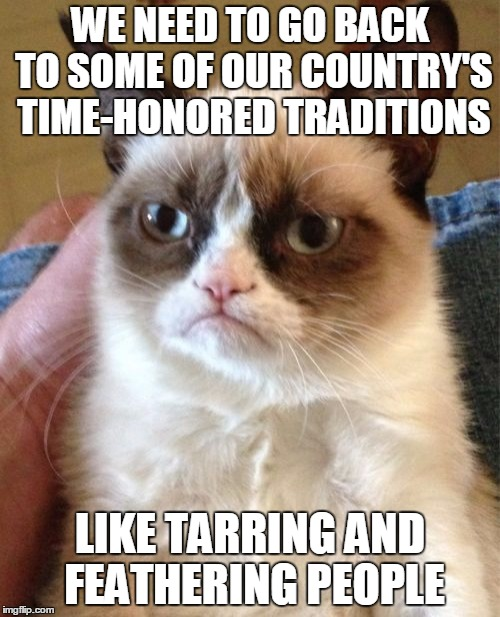 Grumpy Cat, the student of history | WE NEED TO GO BACK TO SOME OF OUR COUNTRY'S TIME-HONORED TRADITIONS LIKE TARRING AND FEATHERING PEOPLE | image tagged in memes,grumpy cat,tar,feathers,learning from history | made w/ Imgflip meme maker
